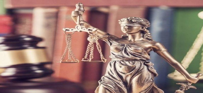 Применение гражданского и семейного законодательства по аналогии.