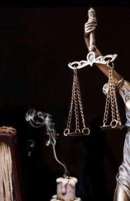 Арбитраж Правовед Плюс